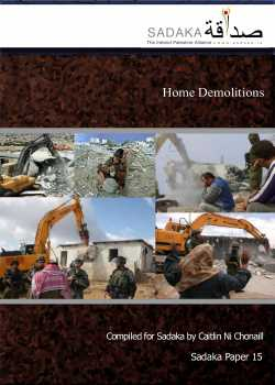 Home Demolitions Paper